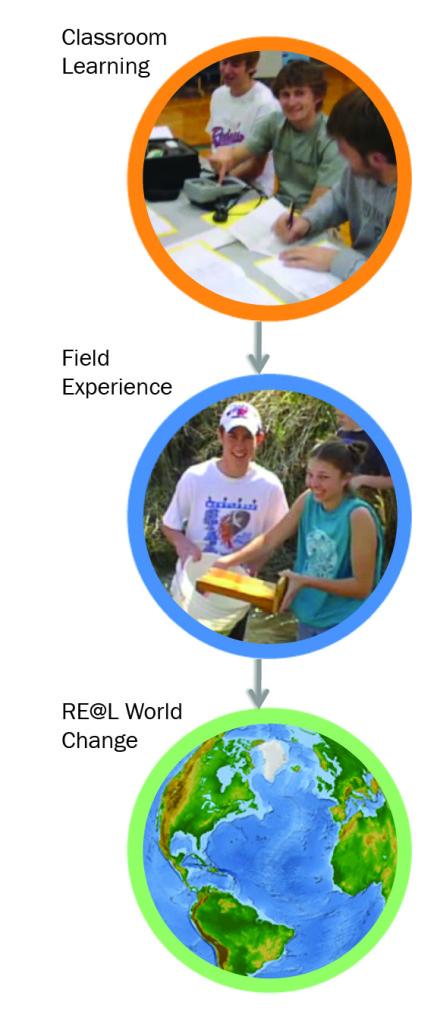 STEM-circles1