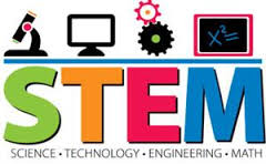 STEM Case Studies