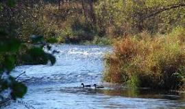 Kinni River