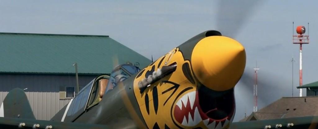 P40 Tiger Shark